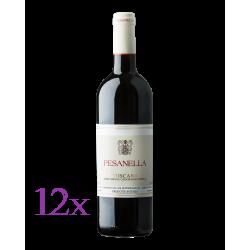 12x Pesanella - Toscana IGT
